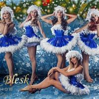 Shik Blesk Show (Шик Блеск Шоу)